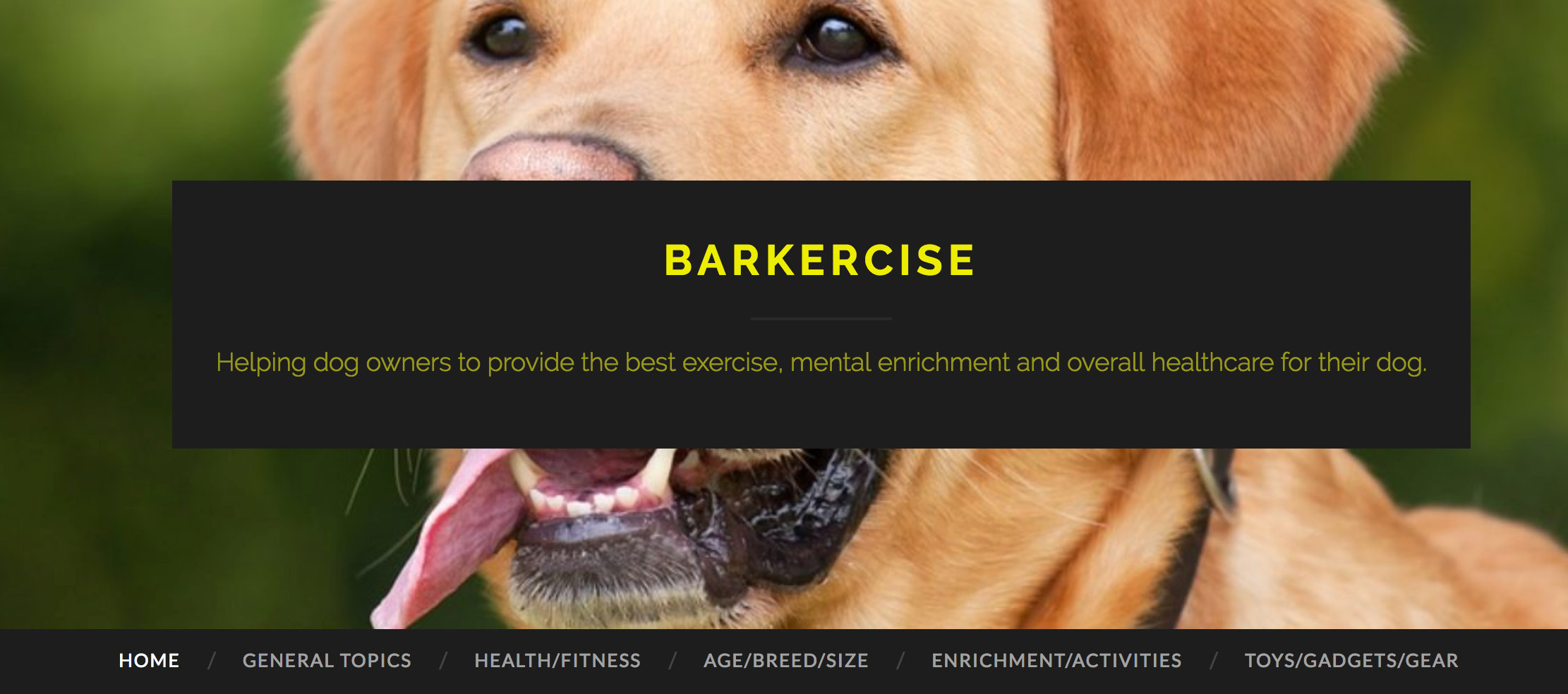 barkercise dot com homepage