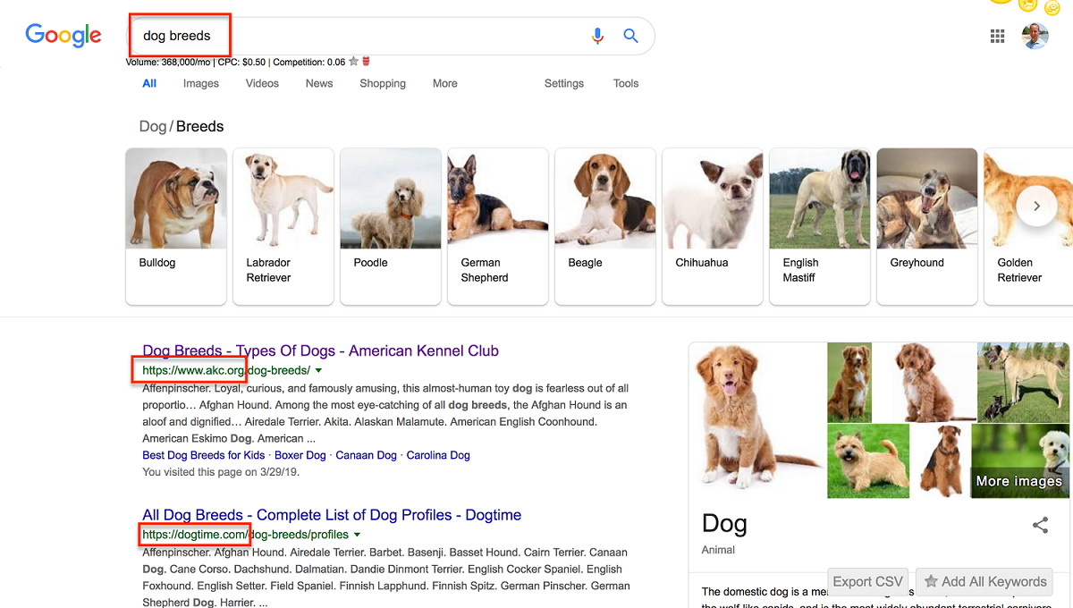 dog breeds keyword research