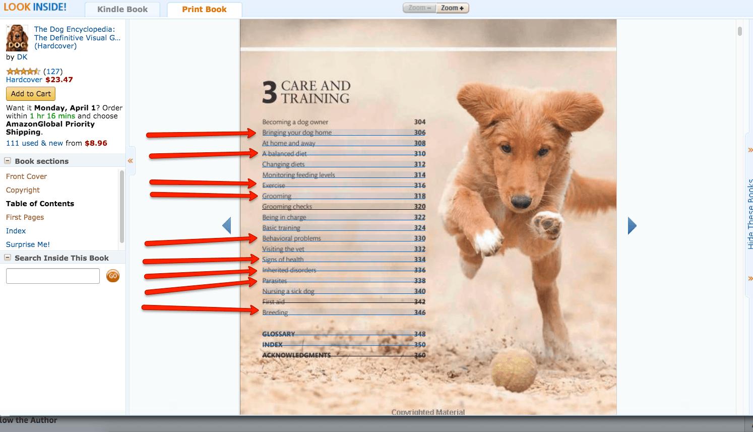 Find a Niche Step #2: Understand the Search Landscape