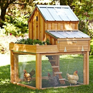 build_a_chicken_coop